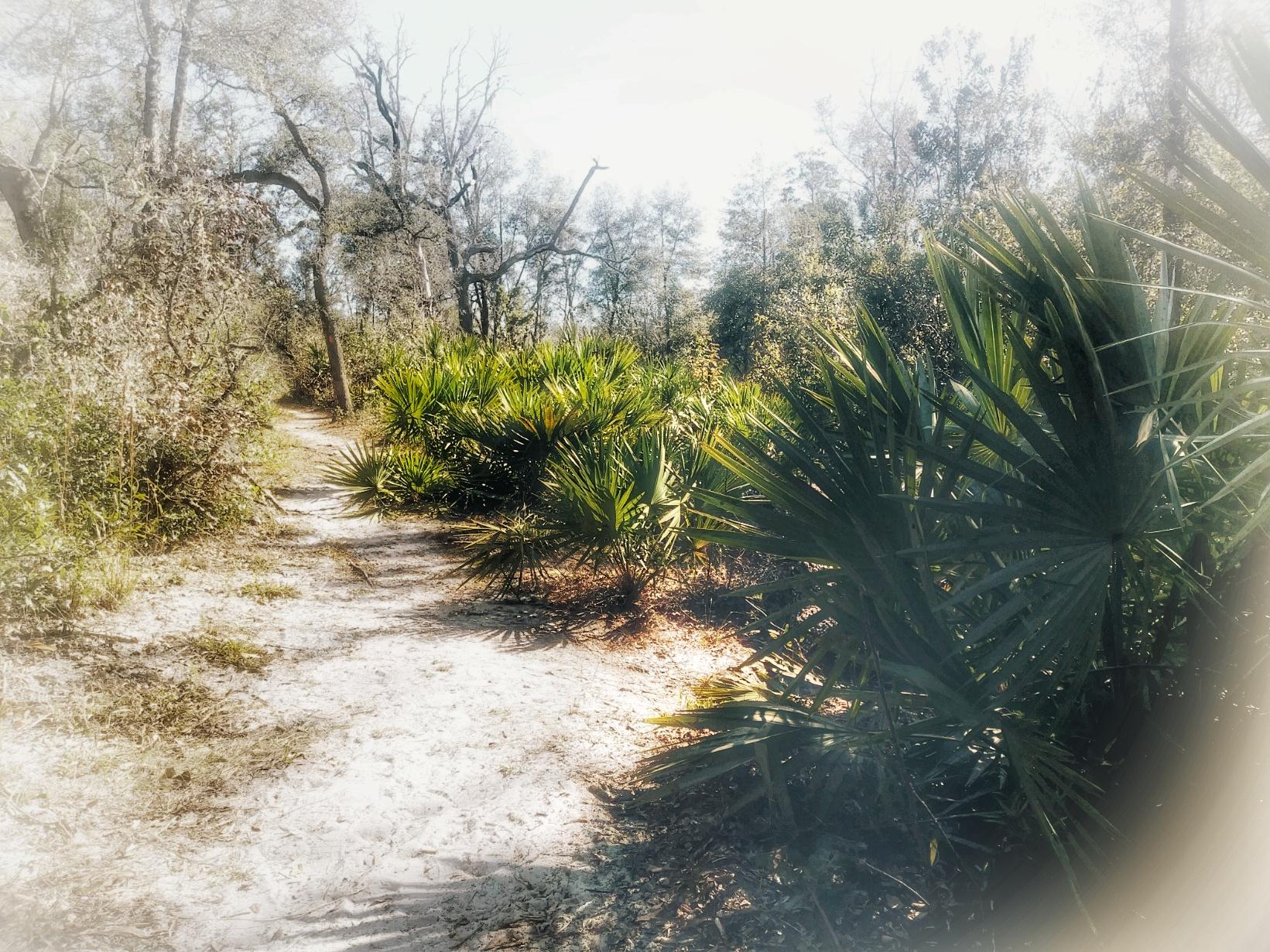 Hikes & Adventures